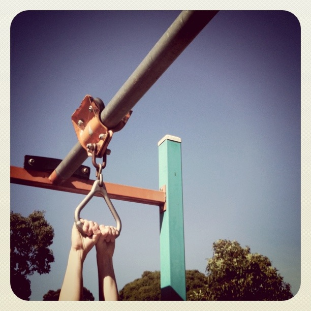 hands on the flying fox play equipment