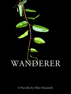 Wanderer by El Naismith