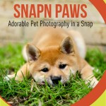 dog and cat photography ebook