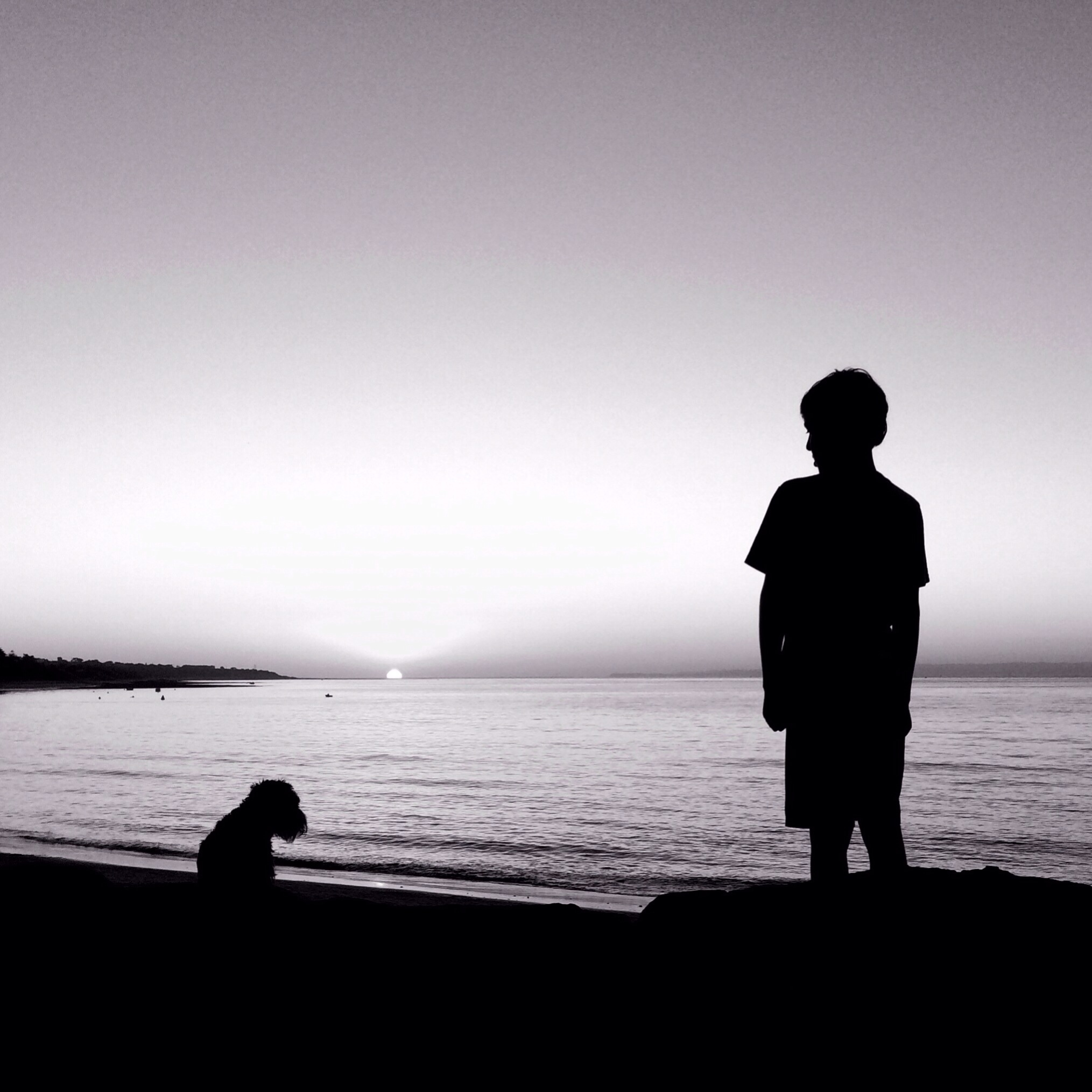 dog and boy looking out at the sun set